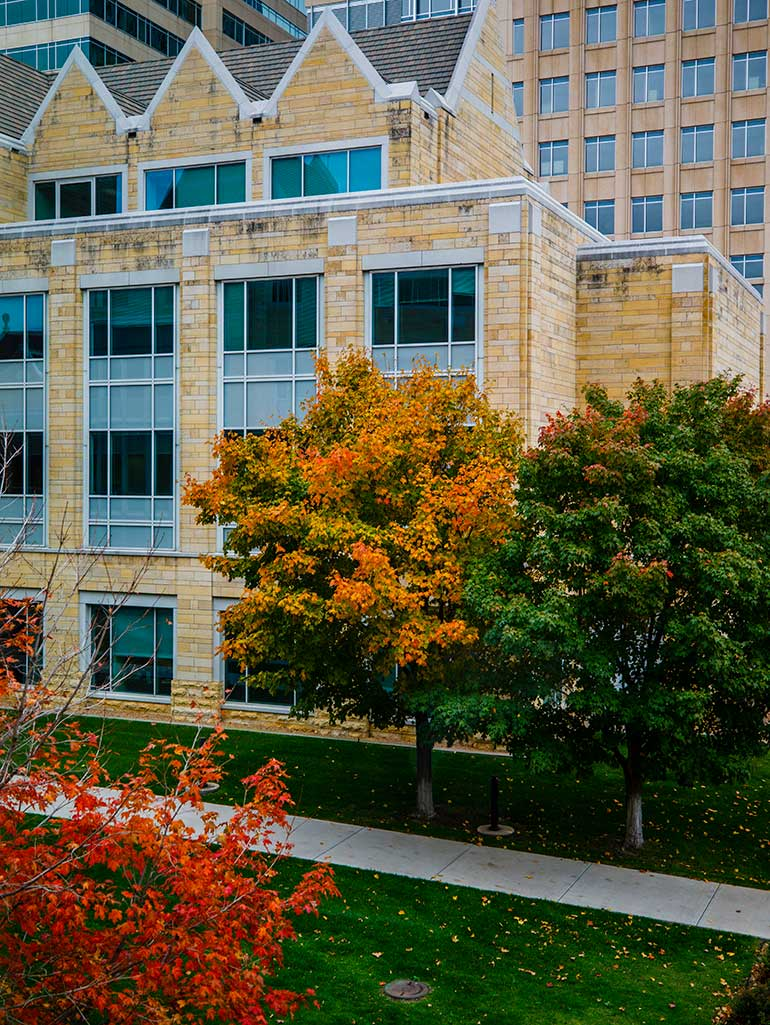 Terrence Murphy Hall is seen past leaves covered in fall foliage.