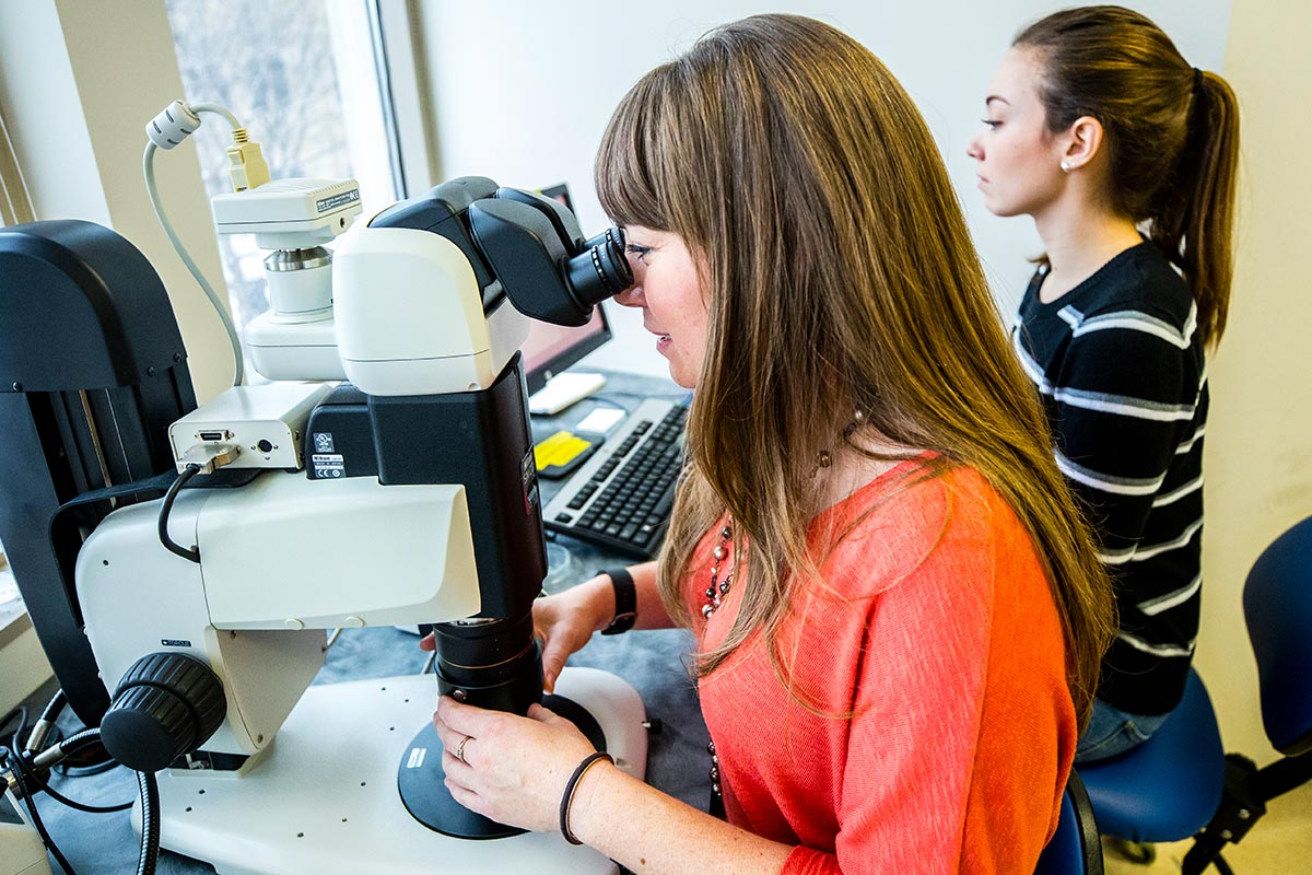 A professor looks into a microscope in a lab room.