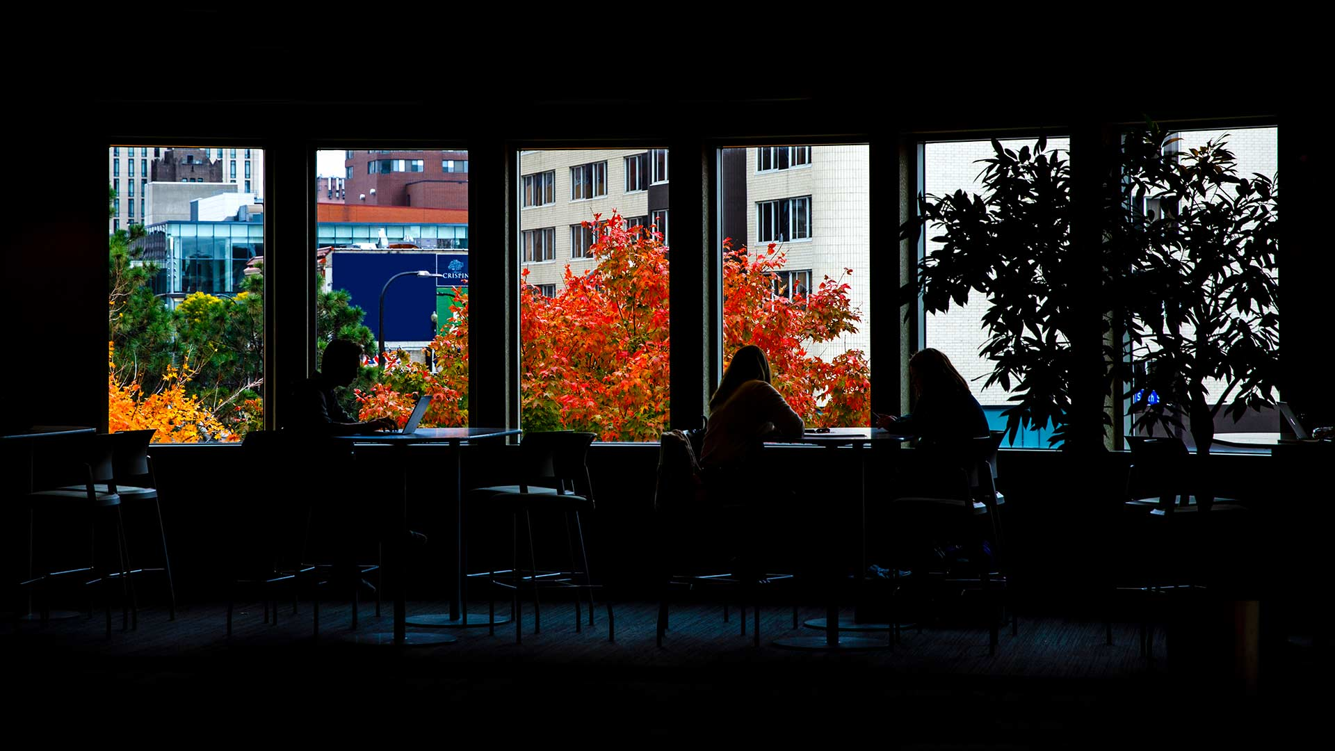 Students sitting and studying at the UST Minneapolis Campus, as Brit's Pub can be viewed from the window.